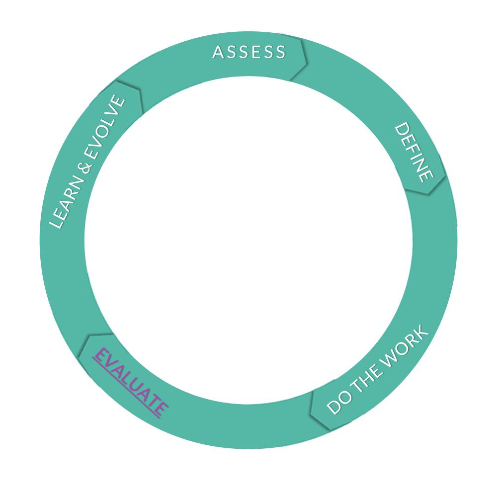 project-process-evaluate